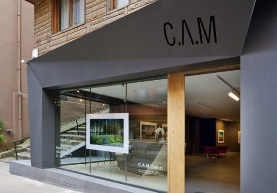 Cam Galeri