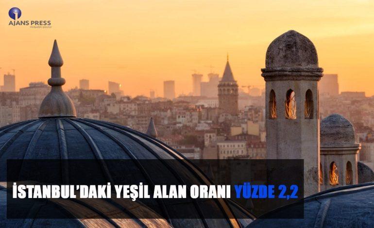 İstanbul'daki Yeşil Alan Oranı Yüzde 2,2