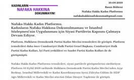Nafaka Hakkı Kadın Platformu Basın Bülteni