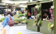 Ekolojik atölyeler 16-17 Ekim'de Zorlu Center 'Eco Love Fest'te